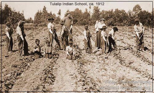 american indian students were taught modern american farming    American Farmers Working