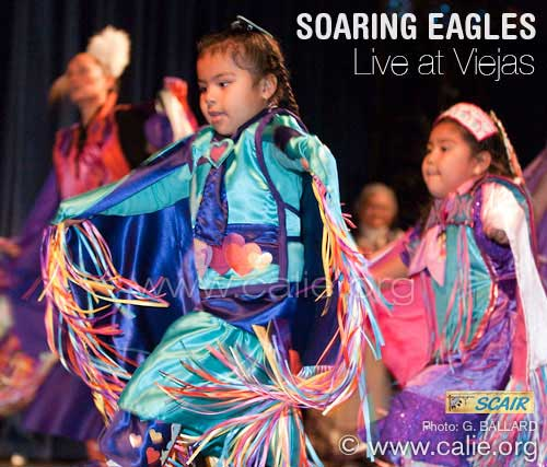 LOADING A LOT OF SOARING EAGLES PICTURES...